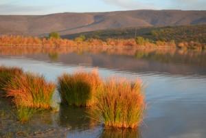 McGregor Krans Nature Reserve