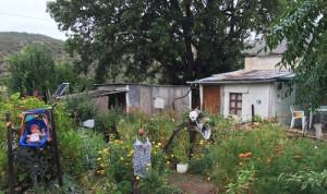 vero's garden