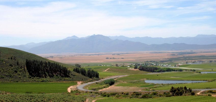 Riebeek Kasteel Western Cape